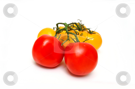 Red And Yellow Tomatoes stock photo, Yellow tomatoes with two red tomato isolated on a white background by Lynn Bendickson