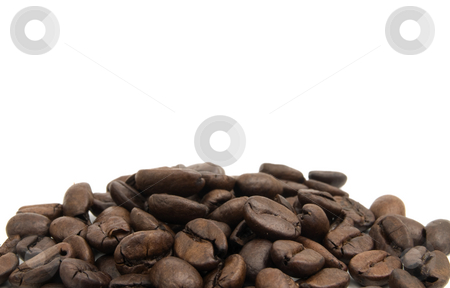 Coffee Beans stock photo, Large Group of coffee beans on a white background by John Teeter