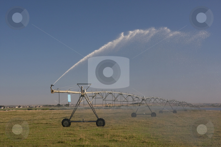 Irrigated meadow with sprinklers running stock photo, Irrigated meadow or pasture in northern Colorado with pivot sprinkler running, late summer by Marek Uliasz