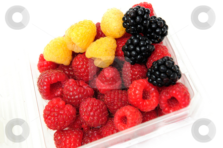 Assorted Berries stock photo, Blckberries with red and golden raspberries in a plastic store container on a white nackground by Lynn Bendickson