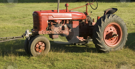 Old red tractor stock photo, An old red tractor pictured in a field by Stephen Gibson