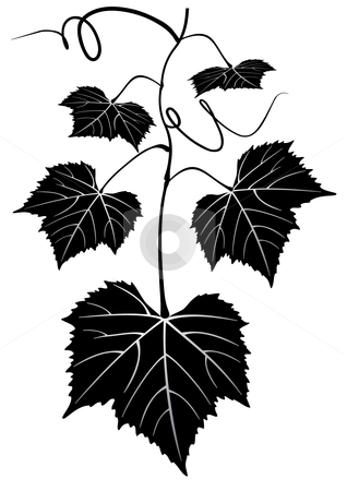 Bunch of grapes stock vector clipart, Bunch of grapes - vector illustration by ojal_2