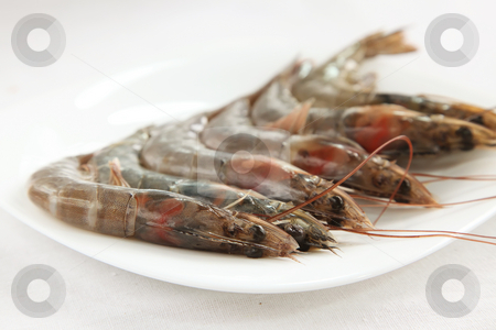 Whole raw prawns stock photo, Whole fresh raw prawns in shell unpeeled by Kheng Guan Toh