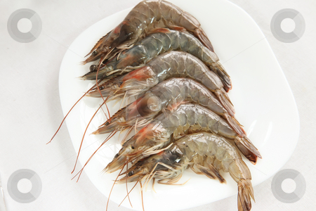 Whole raw prawns stock photo, Whole raw prawns by Kheng Guan Toh