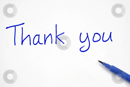 Thank you, written with a blue felt tip pen. stock photo, Thank you, written with a blue felt tip pen. by Stephen Rees