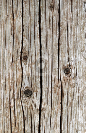 Weathered wooden sea wall girder close up. stock photo, Weathered wooden sea wall girder close up. by Stephen Rees