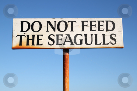 Do not feed the seagulls sign. stock photo, Do not feed the seagulls sign. by Stephen Rees