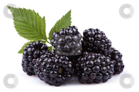 The blackberry stock photo,  by Alexandr Vlassyuk