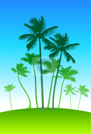 Palm trees on blue sky background stock vector clipart, Palm trees on blue sky background  Original vector illustration based on my personal photos by L Belomlinsky