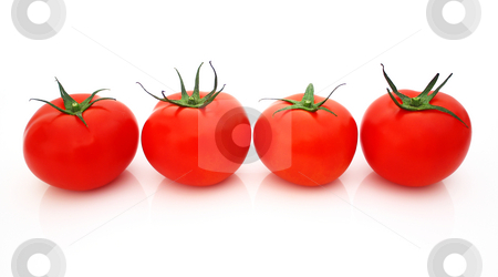 Tomatos stock photo, Tomatos by Julian Weber