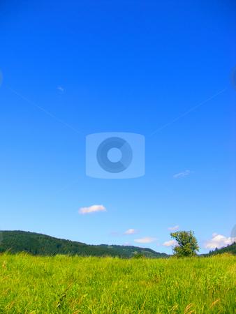 Summer stock photo, Summer by Julian Weber