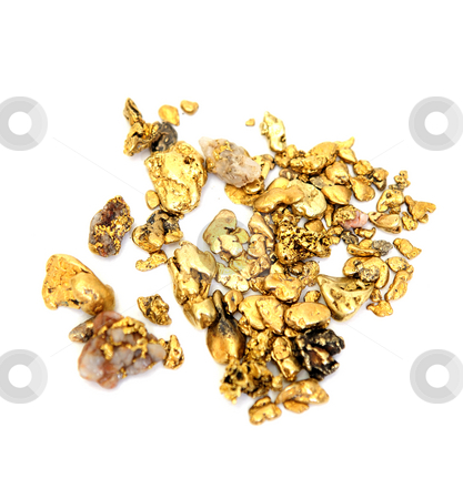 Gold Nugget stock photo, Gold nuggets of various sizes and shapes isolated on a white background by Lynn Bendickson