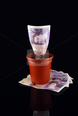 Money Pot on Stack stock photo, 20 pound note in plant pot against reflective black WITH Clipping Path by Paul Inkles