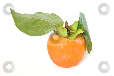 Kaki stock photo, One ripe persimmon isolated on white background by ANTONIO SCARPI