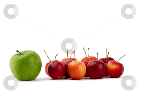 Apples stock photo, A group of various apples by Barna Tanko