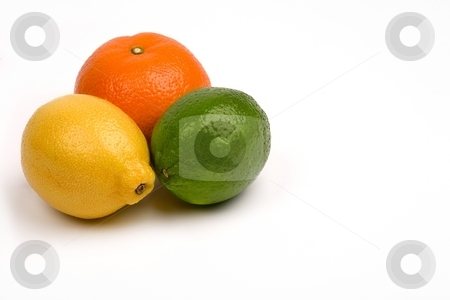 Citrus stock photo, Group of citrus fruits by Barna Tanko