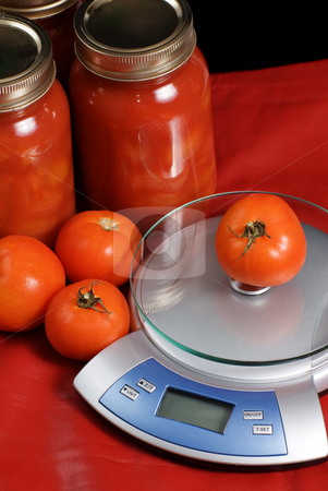 Canned Tomatoes stock photo, Canned Tomatoes and a kitchen scale shot against a red background by Richard Nelson