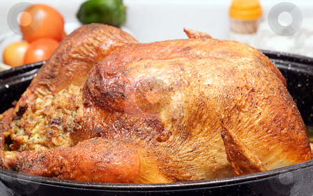 Turkey stock photo, A large cooked turkey sitting in a roaster, on a kitchen counter by Richard Nelson
