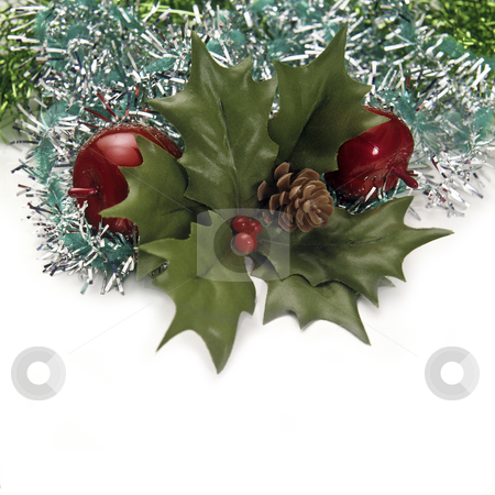 Christmas stock photo, Christmas decoration with green leaves, apple and bunches of green pine needles on a white background. by Julio Viard