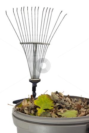 Trash bin, dry leaves and rake stock photo, Plastic trash bin wtih dry leaves and rusty rake isolated on white - fall backyard work concept by Marek Uliasz