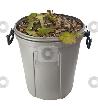Dry leaves in a plastic garbage bin stock photo, Dry leaves in a plastic garbage bin isolated on white - fall backyard work concept by Marek Uliasz
