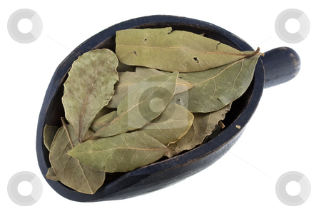 Scoop of dried bay leaves stock photo, Dried bay laurel leaves on a rustic wooden scoop isolated on white by Marek Uliasz