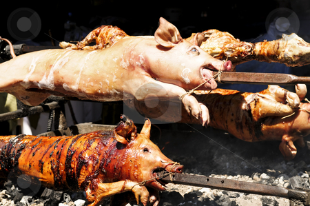 Roasted pigs stock photo, Spit roasted pigs cooked over hot coals by Elena Elisseeva