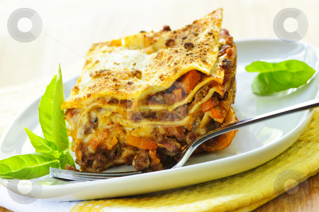 Plate of lasagna stock photo, Serving of fresh baked lasagna on a plate by Elena Elisseeva