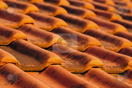 Roof tiles stock photo, Closeup of red clay interlocking roofing tiles background by Elena Elisseeva