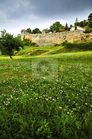 Kalemegdan fortress in Belgrade stock photo, Kalemegdan fortress in Belgrade with field of wildflowers by Elena Elisseeva