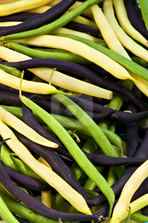 String beans stock photo, Pile of purple yellow and green string beans by Elena Elisseeva