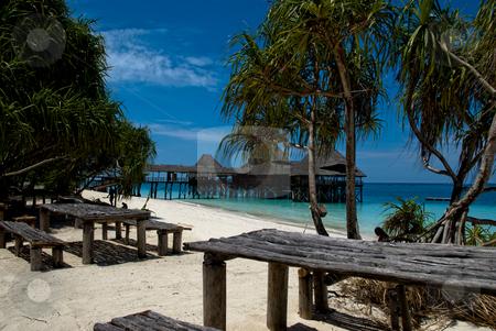 Paradise beach stock photo, Beach scene at northern tip of Zanzibar by bah1969