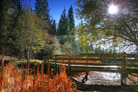 Lakeside Bridge Landscape stock photo, Lakeside Bridge Landscape On a Sunny Afternoon Day by Katrina Brown