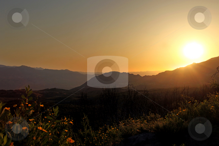 Beautiful Sunrise In the Mountains stock photo, Beautiful Sunrise In the Mountains Among Poppies and Hazy Hills. Image has slight noise due to shooting conditions. by Katrina Brown