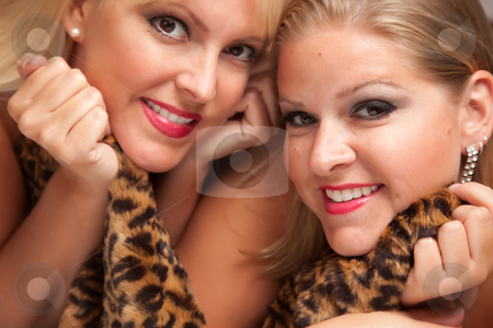 Beautiful Blonde Women Posing on Leopard Blanket. stock photo, Beautiful Blonde Models Posing on Leopard Print Blanket. by Andy Dean