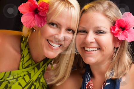 Beautiful Smiling Girls with Hibiscus Flower stock photo, Beautiful Smiling Girls with Hibiscus Flowers in Their Hair. by Andy Dean