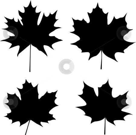 Maple leaves silhouette stock vector clipart, Maple leaves silhouette by Vadim Pats