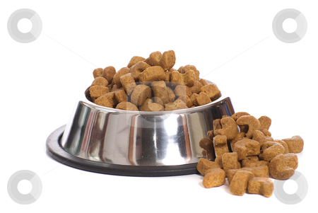 Dog Food stock photo, Dog food over flowing from a metal dog bowl, isolated against a white background by Richard Nelson