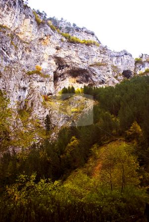 Autumn stock photo, Colorful autumn in Bulgarian mountains by Desislava Dimitrova