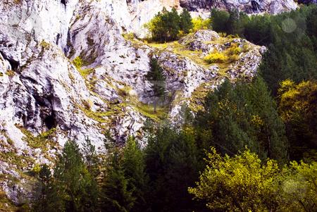 Autumn stock photo, Autumn in Bulgarian mountains by Desislava Dimitrova