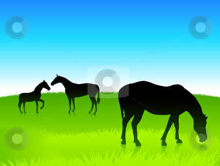 Horses in the green field with blue sky background stock vector clipart, Horses in the green field with blue sky background Original vector illustration by L Belomlinsky