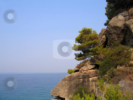 Rocky and wooded shore stock photo, Cliffs with pine trees above the sea. Coast of the Greek Islands by Olga Lipatova