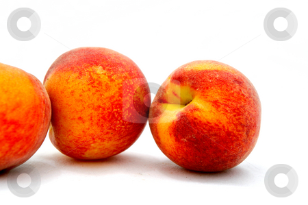Summer Peaches stock photo, Three ripe peaches isolated on a white background by Lynn Bendickson