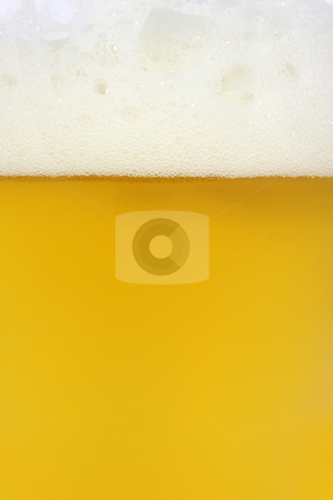 Cold Beer stock photo, Cold beer in a glass close up by Georgios Kollidas