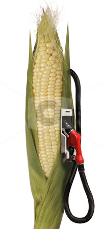 Ethanol stock photo, Corn stalk ethanol gas pump by James Steidl