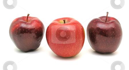 ???? Apple stock photo, Tree red apple on white by Adam Radosavljevic