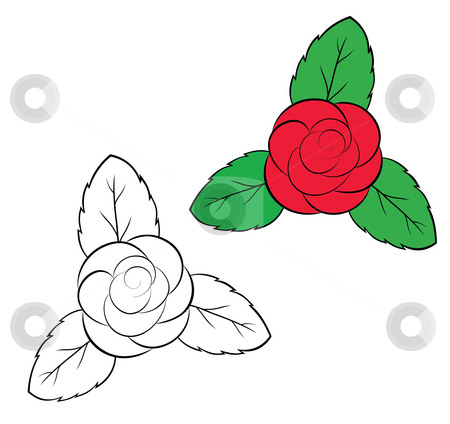 Rosa stock vector clipart, Two buds of a rose - color also it is black white by Alexander Karachkin