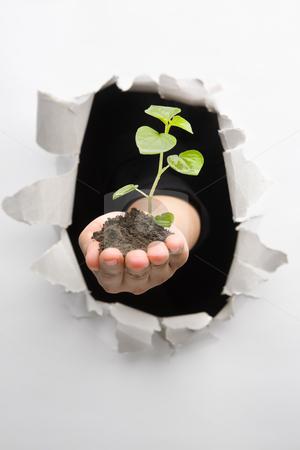 Breakthrough in environment innovation stock photo, Breakthrough in environment innovation - one of the breakthrough series by Rudyanto Wijaya