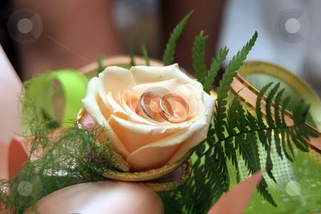 Wedding rings stock photo, Wedding rings by Oleksii Tarakhovskyi