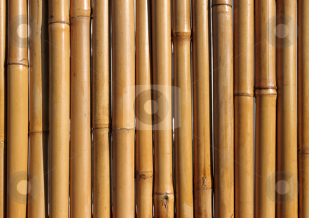 Old bamboo wood fence close up. stock photo, Old bamboo wood fence close up. by Stephen Rees